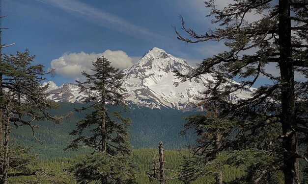 Lolo Pass to Cascade Locks – 32 miles on the PCT