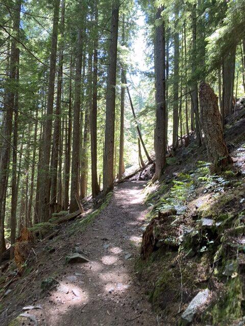Rampart Ride Trail
