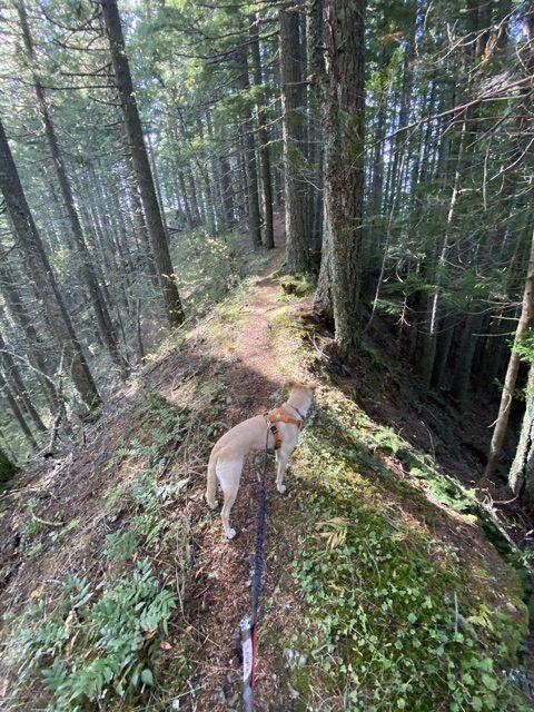 Narrow ridge atop Green Canyon Way Trail