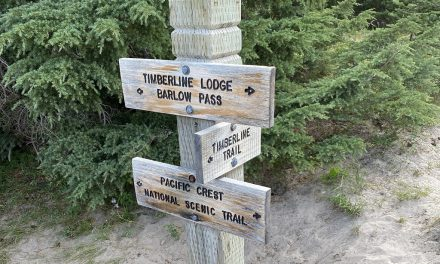 Timberline Trail Reroute – 2021 : Recommendations